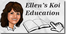 Ellen's Koi Education